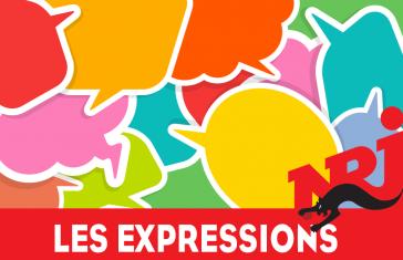 Ca dit koi – Les expressions